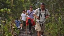 Full Day Combo Tour Best of Arenal Including: Hanging Bridges, La Fortuna Waterfall, Volcano Hike...