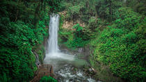 La Paz Waterfall Gardens Walking Tour From San José, San Jose, Eco Tours