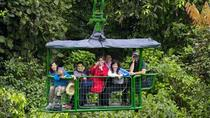 Rainforest Adventure Atlantic Aerial Tram Tour, San Jose, null