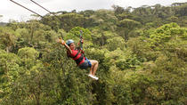 Rainforest Adventure Combo Tour from San Jose, San Jose, Day Trips