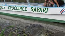 Rainforest Aerial Tram and Crocodile Day Tour from San José, San Jose, Day Trips