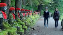 Private Nikko Tochigi Tour from Tokyo Metro Area Full Day, Tokyo, null