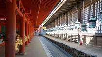 Private Walking Tour of Nara with a Photographer, Kansai, Private Sightseeing Tours