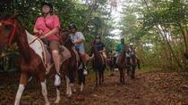 Atlantic Horseback Riding Tour in St Lucia, St Lucia, Horseback Riding