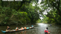 DAY TRIP TO TAMAN NEGARA (NATIONAL PARK OF MALAYSIA), Kuala Lumpur, Private Sightseeing Tours