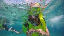 Guided Snorkeling Tour, Fajardo, Snorkeling