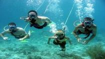 Belize Snuba Adventure Tour from Ambergris Caye, Ambergris Caye