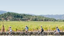 Half-Day Napa Valley Bike and Wine Tour, Napa & Sonoma, Bike & Mountain Bike Tours