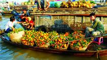 Experience Mekong Delta 2 Days 1 Night With Homestay, Mekong Delta, Multi-day Tours