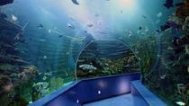 Sharjah Aquarium Entrance Ticket, Sharjah, Attraction Tickets