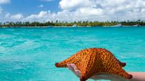 Day Trip to Tropical Saona Island, Punta Cana, Catamaran Cruises