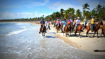 Small-Group Half-Day Horseback Riding Tour from Punta Cana, Punta Cana, Horseback Riding