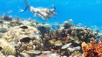 Snuba Snorkelking Parasailing and Catamaran Pack, Punta Cana, Parasailing
