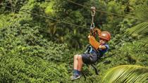 Zipline Adventure in Punta Cana, Punta Cana, Ziplines