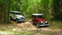 Trinidad Jeep Adventure, Trinidad, 4WD, ATV & Off-Road Tours