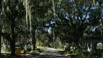 Laurel Grove Walking Tour, Savannah, Cultural Tours