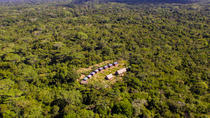 2-Day Maniti Eco-Lodge Jungle Adventure from Iquitos, Iquitos, Overnight Tours