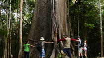3-Day All Inclusive Pacaya Samiria Reserve from Iquitos, Iquitos, Multi-day Tours