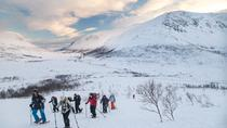 5-Hour Guided Snowshoe Hill Hike on the Whale Island in Tromso, Tromsö