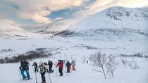 Snowshoe Hike on the Whale Island in Tromso, Tromso, Ski & Snow