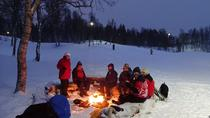 Tromso Winter Adventures - Tobogganing, Snowshoeing and Winter Games, Tromso, Ski & Snow
