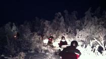 Private Northern Lights Snowmobile Safari from Rovaniemi