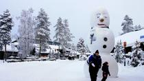 Rovaniemi Snowmobile Tour: Visit a Reindeer Farm and Meet Santa, Rovaniemi, Ski & Snow