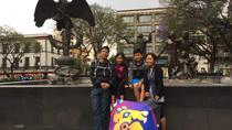 Mexico City Layover Tour: Downtown City Sightseeing, Mexico City, Walking Tours