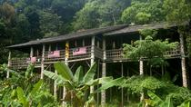 Annah Rais Bidayuh Longhouse Tour from Kuching, Kuching, Day Trips