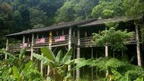 Annah Rais Bidayuh Longhouse Tour from Kuching, Kuching, Day Trips