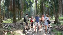 Malacca Mountain Bike Adventure Tour, Kuala Lumpur, Bike & Mountain Bike Tours