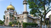 Private Singapore Melting Pot Discovery Tour, Singapore, Private Sightseeing Tours