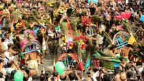 Thaipusam Festival Day Tour from Kuala Lumpur, Kuala Lumpur, Full-day Tours