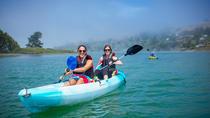 Russian River Kayak Tour at the beautiful Sonoma Coast, Santa Rosa, Kayaking & Canoeing