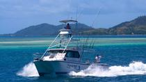 Private Full-Day Fishing Charter aboard 'Synergy' from Denarau, Denarau Island, Port Transfers