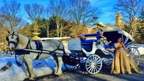 Horse Carriage Ride Central Park, New York City, Private Sightseeing Tours