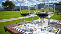 Full Day Private Winelands Tour- Stellenbosch, Cape Town, Food Tours