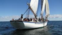 Windjammer Classic Day Sail, Camden, Sailing Trips