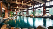 Chengdu Private Tour of Dujiangyan Panda Base And Qingcheng Hot Springs Including Lunch, Chengdu