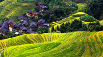 Private Day Tour Visiting Longji Rice Terrace with PingAn Zhuang Minority Village and Sanjie Liu...