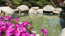 Private Tour: Xian Terracotta Warrior Museum and Angsana Xian Lintong Hot Springs, Xian, Private...