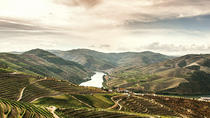 Full-Day Douro Valley Wine and Food Tour, Porto, Wine Tasting & Winery Tours