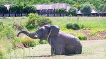 2 Nights Bakubung Bush Lodge Safaris form Johannesberg or Pretoria, Johannesburg, Private...