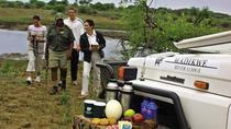 3night-4days Madikwe River Lodge-Madikwe Game Reserve from Johannesburg Pretoria, Johannesburg,...