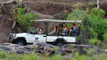 3nights-4days Madikwe River Lodge Fly In Safari Package-Madikwe Game Reserve, Johannesburg, Private...