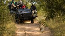 3nights Lion Sands River Lodge - Lion Sands Game Reserve from Johannesburg, Johannesburg, Private...