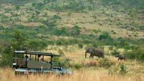 Full Day Open Vehicle Safari Pilanesberg National Park, Johannesburg, Attraction Tickets
