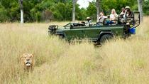 Nottens Bush Camp 4days Safari, Johannesburg, Multi-day Tours