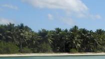 Saona Island Day Trip, Punta Cana, Day Trips