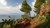 La Gomera Wild North West Tour , La Gomera, Full-day Tours